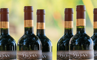 Vylyan Winery – Wine, Gastronomy, Experience